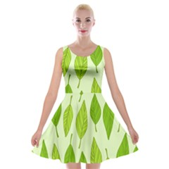 Spring Leaf Green Velvet Skater Dress by Jojostore