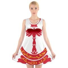 Emblem Of Brunei V Neck Sleeveless Skater Dress by abbeyz71