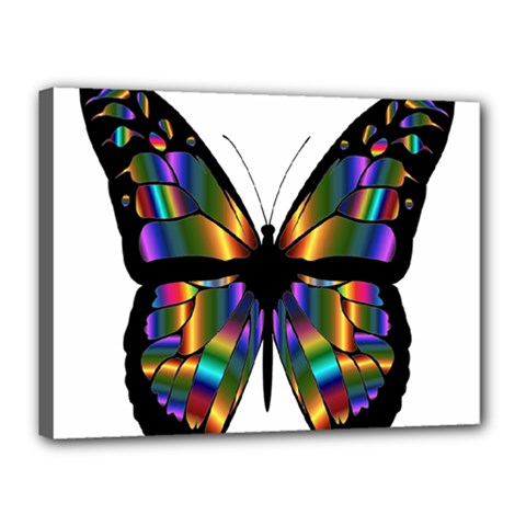 Abstract Animal Art Butterfly Canvas 16  x 12  by Nexatart