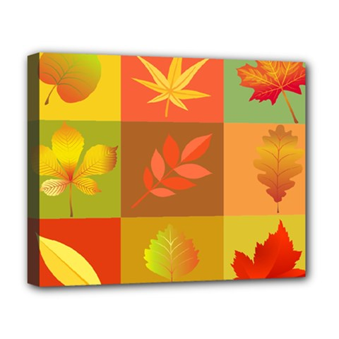 Autumn Leaves Colorful Fall Foliage Deluxe Canvas 20  X 16   by Nexatart