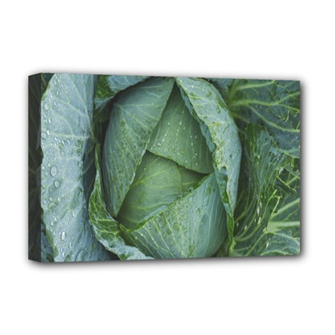 Bright Cabbage Color Dew Flora Deluxe Canvas 18  X 12   by Nexatart