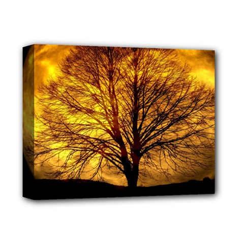 Moon Tree Kahl Silhouette Deluxe Canvas 14  X 11