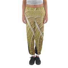 Yellow Leaf Fig Tree Texture Women s Jogger Sweatpants by Nexatart