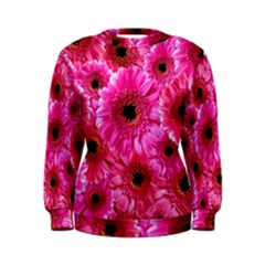 Gerbera Flower Nature Pink Blosso Women s Sweatshirt