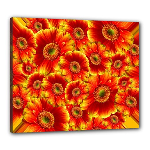 Gerbera Flowers Blossom Bloom Canvas 24  x 20