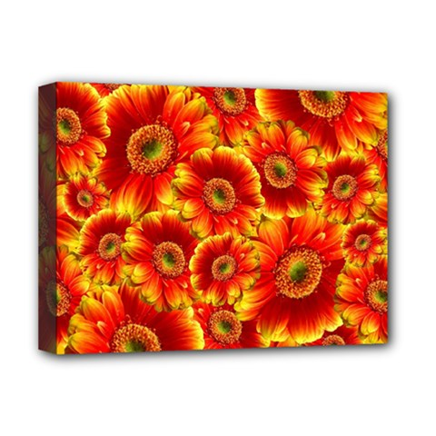 Gerbera Flowers Blossom Bloom Deluxe Canvas 16  X 12
