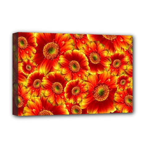Gerbera Flowers Blossom Bloom Deluxe Canvas 18  X 12