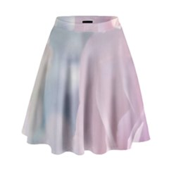 Pastel Roses High Waist Skirt by Brittlevirginclothing