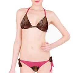 Snail Pink Background Bikini Set by Nexatart