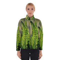 Fern Ferns Green Nature Foliage Winterwear by Nexatart