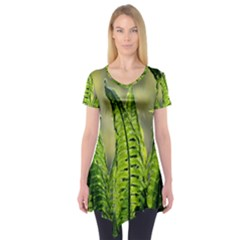Fern Ferns Green Nature Foliage Short Sleeve Tunic  by Nexatart