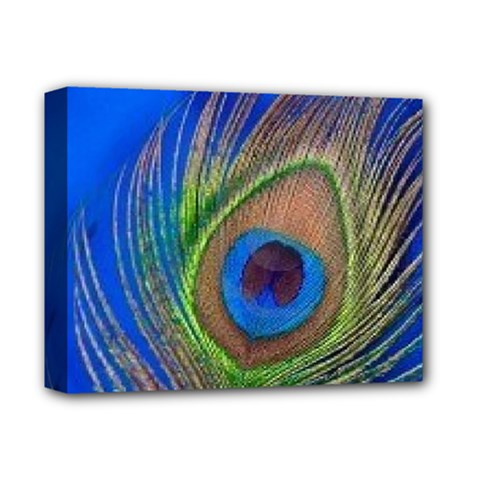 Blue Peacock Feather Deluxe Canvas 14  X 11  by Amaryn4rt