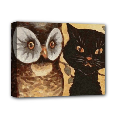 Owl And Black Cat Deluxe Canvas 14  X 11