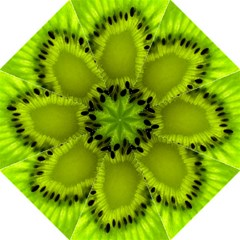 Kiwi Fruit Slices Cut Macro Green Straight Umbrellas by Alisyart