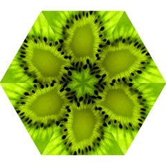 Kiwi Fruit Slices Cut Macro Green Mini Folding Umbrellas by Alisyart