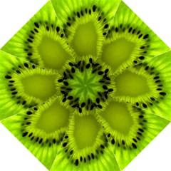 Kiwi Fruit Slices Cut Macro Green Hook Handle Umbrellas (large) by Alisyart