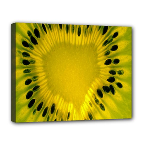 Kiwi Fruit Slices Cut Macro Green Yellow Canvas 14  X 11  by Alisyart