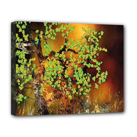 Backdrop Background Tree Abstract Deluxe Canvas 20  x 16