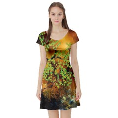 Backdrop Background Tree Abstract Short Sleeve Skater Dress