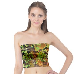 Backdrop Background Tree Abstract Tube Top