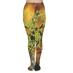 Backdrop Background Tree Abstract Women s Tights