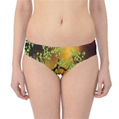 Backdrop Background Tree Abstract Hipster Bikini Bottoms