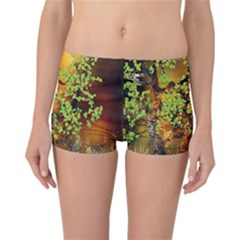 Backdrop Background Tree Abstract Reversible Bikini Bottoms