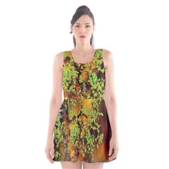 Backdrop Background Tree Abstract Scoop Neck Skater Dress