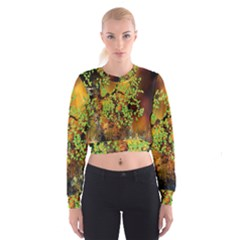 Backdrop Background Tree Abstract Women s Cropped Sweatshirt
