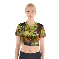 Backdrop Background Tree Abstract Cotton Crop Top