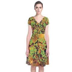 Backdrop Background Tree Abstract Short Sleeve Front Wrap Dress