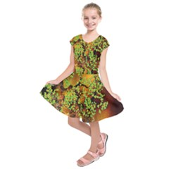 Backdrop Background Tree Abstract Kids  Short Sleeve Dress