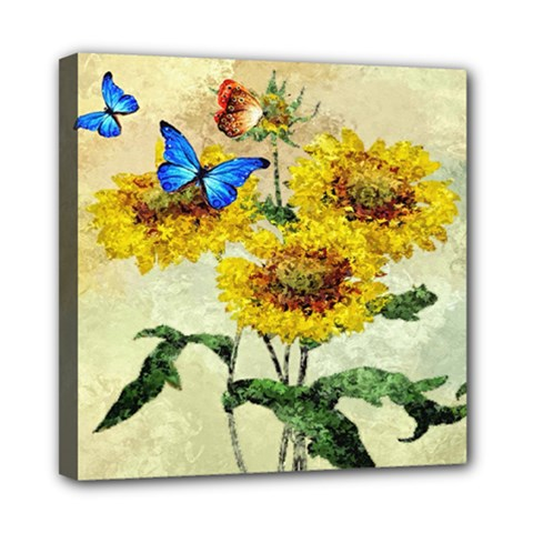 Backdrop Colorful Butterfly Mini Canvas 8  X 8