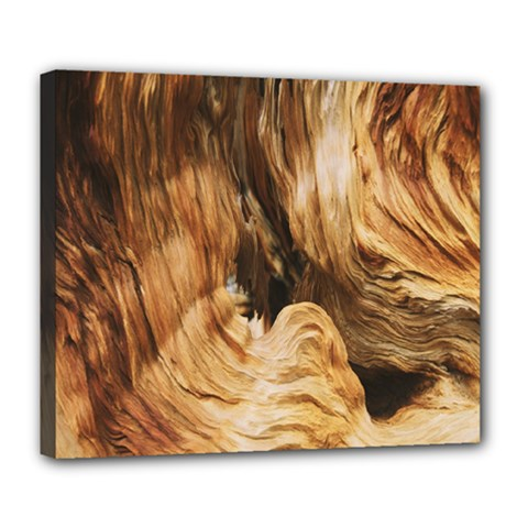 Brown Beige Abstract Painting Deluxe Canvas 24  X 20   by Nexatart