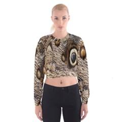 Butterfly Wing Detail Women s Cropped Sweatshirt by Nexatart