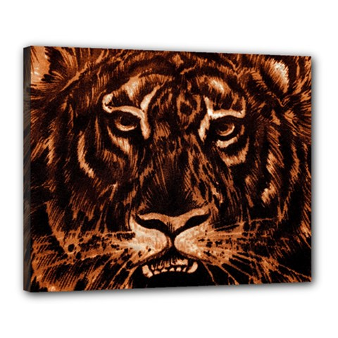 Eye Of The Tiger Canvas 20  X 16