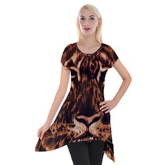 Eye Of The Tiger Short Sleeve Side Drop Tunic by Nexatart