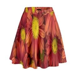 Flowers Nature Plants Autumn Affix High Waist Skirt by Nexatart