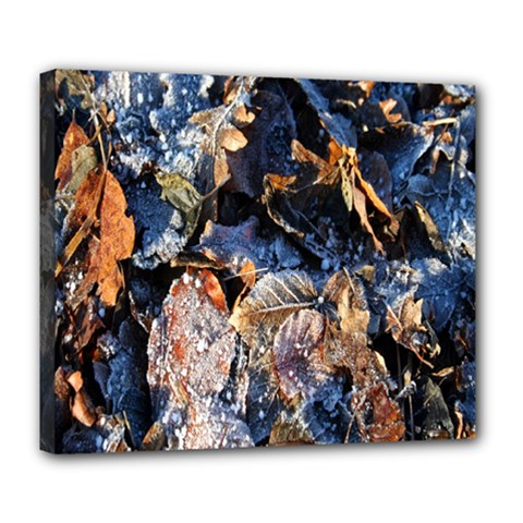 Frost Leaves Winter Park Morning Deluxe Canvas 24  X 20   by Nexatart
