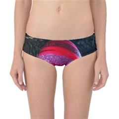 Glass Ball Decorated Beautiful Red Classic Bikini Bottoms by Nexatart