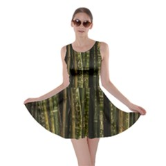 Green And Brown Bamboo Trees Skater Dress