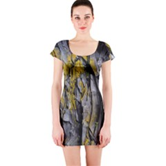 Grey Yellow Stone  Short Sleeve Bodycon Dress by Nexatart