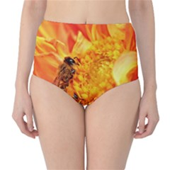 Honey Bee Takes Nectar High Waist Bikini Bottoms