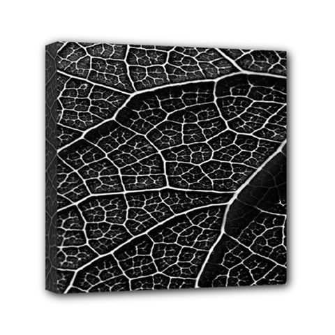 Leaf Pattern  B&w Mini Canvas 6  X 6