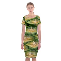 Pineapple Pattern Classic Short Sleeve Midi Dress by Nexatart