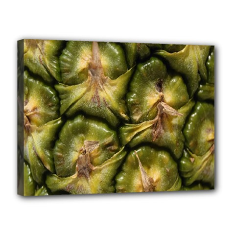 Pineapple Fruit Close Up Macro Canvas 16  X 12  by Nexatart