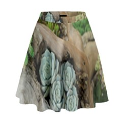 Plant Succulent Plants Flower Wood High Waist Skirt by Nexatart