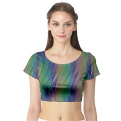 Texture Abstract Background Short Sleeve Crop Top (tight Fit) by Nexatart
