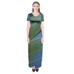 Feather Parrot Colorful Metalic Short Sleeve Maxi Dress
