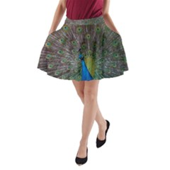Peacock Feather Beat Rad Blue A Line Pocket Skirt by Amaryn4rt